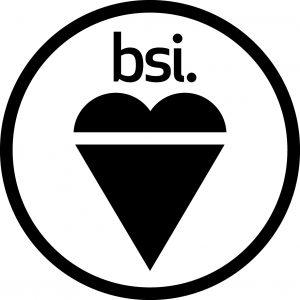 British standards institute image